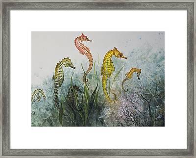Sea Horses Framed Print by Nancy Gorr