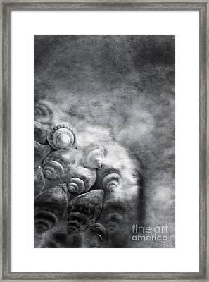 Sea Treasures Framed Print by VIAINA Visual Artist