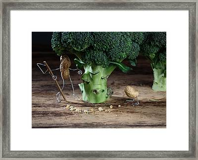 Simple Things -  Strange Birds Framed Print by Nailia Schwarz