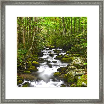 Smoky Mountain Stream Framed Print by Frozen in Time Fine Art Photography