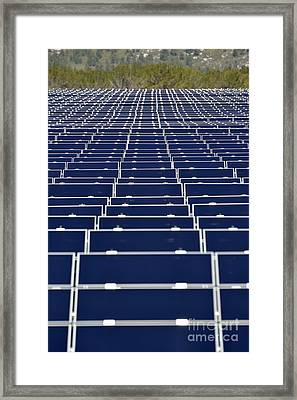Solar Panels In Farm Framed Print by Sami Sarkis