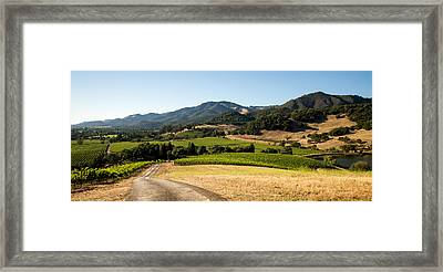 Sonoma Valley Framed Print by Clay Townsend
