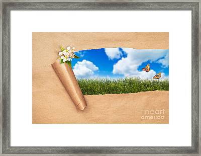 Spring Framed Print by Amanda And Christopher Elwell