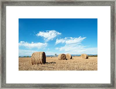 Straw Bales At A Stubbel Field Framed Print by Svetoslav Radkov