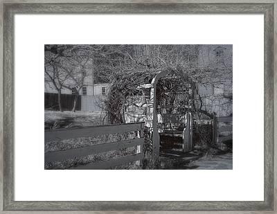 Strawbery Banke  Framed Print by Joann Vitali