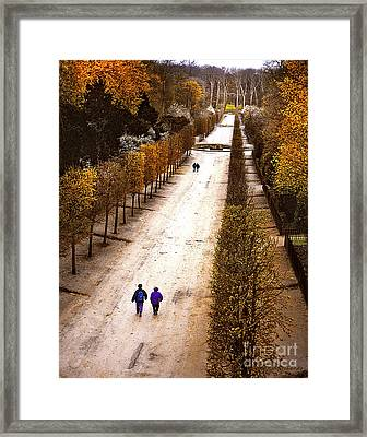 Strolling Versailles Framed Print by Barbara D Richards