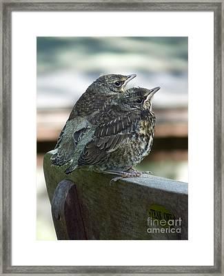 Take Off Framed Print by Lutz Baar