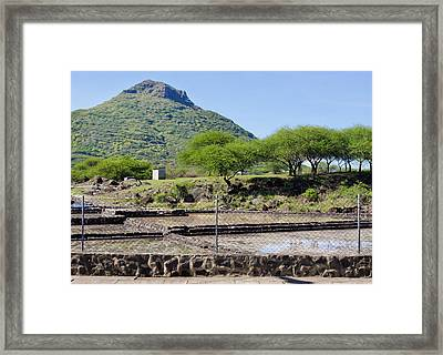 Tamarin Salt Farm Framed Print by Tom Gowanlock