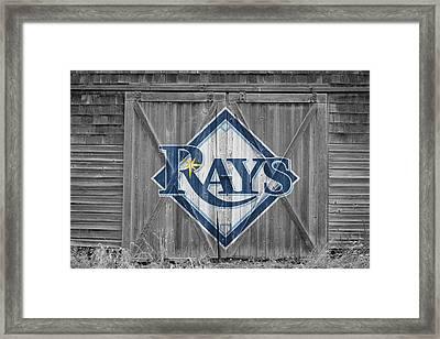 Tampa Bay Rays Framed Print by Joe Hamilton