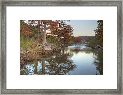 Texas Hill Country Images - Cypress Of Pedernales Falls State Pa Framed Print by Rob Greebon