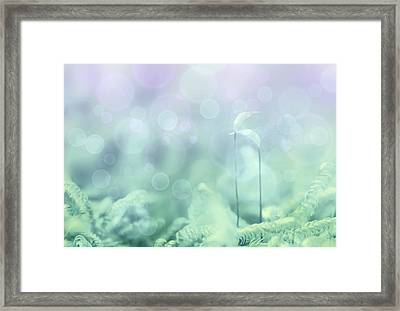 The Date Framed Print by Heike Hultsch