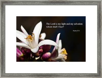 The Lord Is Good Framed Print by J L