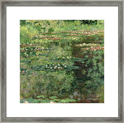 The Waterlily Pond Framed Print by Claude Monet