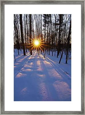 The Winter Kiss Framed Print by Mircea Costina Photography