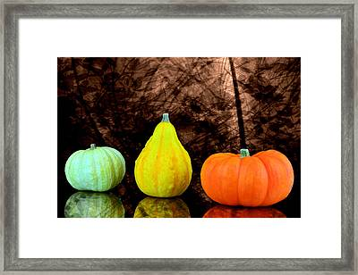 Three Small Pumpkins  Framed Print by Toppart Sweden