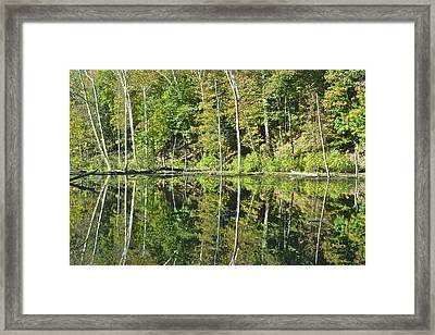 Two Of A Kind Framed Print by Frozen in Time Fine Art Photography