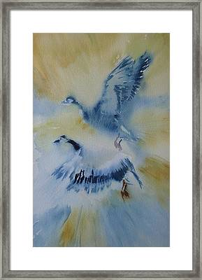 Up And Away Framed Print by Lori Ippolito