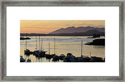 Vancouver Island Framed Print by Matt Freedman