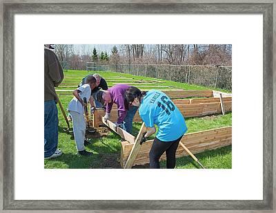 Volunteers Building Raised Beds Framed Print by Jim West