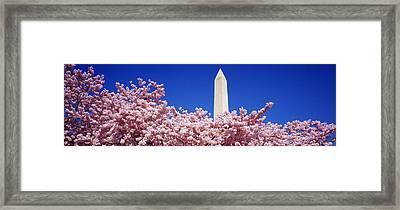 Washington Monument Washington Dc Framed Print by Panoramic Images