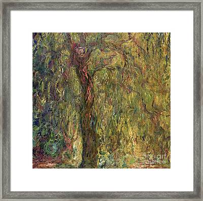 Weeping Willow Framed Print by Claude Monet