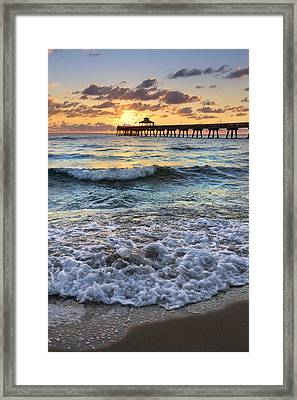 Whipped Cream Framed Print by Debra and Dave Vanderlaan