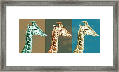 Wild Animal Stylised Pop Art Drawing Potrait Poser Framed Print by Kim Wang