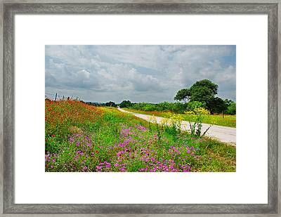Wildflower Wonderland Framed Print by Lynn Bauer