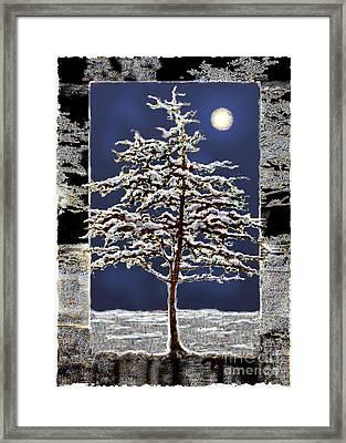 Winter Moon Framed Print by Ursula Freer