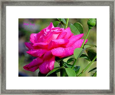 With Love Framed Print by Zina Stromberg