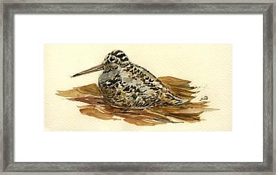 Woodcock Framed Print by Juan  Bosco