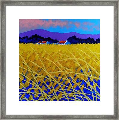 Yellow Meadow Framed Print by John  Nolan