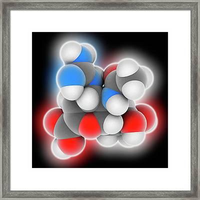 Zanamivir Drug Molecule Framed Print by Laguna Design