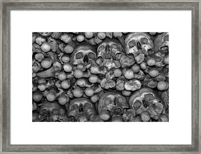 Human Bones. Framed Print by Fernando Barozza
