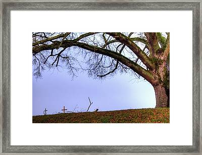 20699 Framed Print by Jerry Sodorff