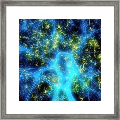 Neuron Framed Print by Mehau Kulyk