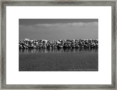 22 Framed Print by Joey  Maganini