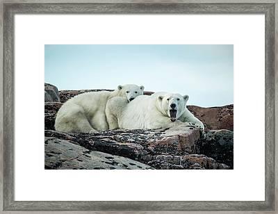 Canada, Nunavut Territory, Repulse Bay Framed Print by Paul Souders