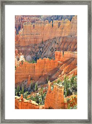 Bryce Canyon Framed Print by Ray Mathis