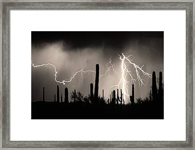 2nd Shot - 1 Shoot Framed Print by James BO  Insogna