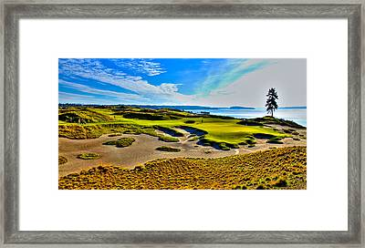 #15 At Chambers Bay Golf Course - Location Of The 2015 U.s. Open Tournament Framed Print by David Patterson