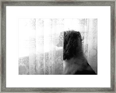 3 30 Framed Print by Angie Rea