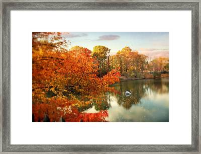 Autumn Splendor Framed Print by Jessica Jenney