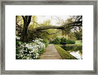 Bellingrath Gardens - Alabama Framed Print by Mountain Dreams