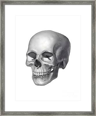 Black And White Illustration Of A Human Framed Print by Nicholas Mayeux