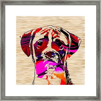 Boxer Framed Print by Marvin Blaine