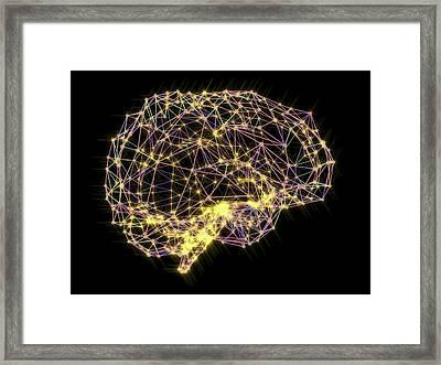 Brain Framed Print by Alfred Pasieka