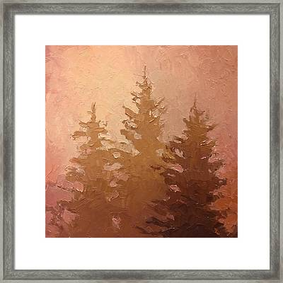 3 Cedars In The Fog No. 2 Framed Print by Karen Whitworth