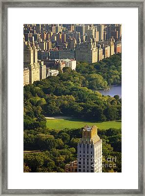 Central Park Framed Print by Brian Jannsen