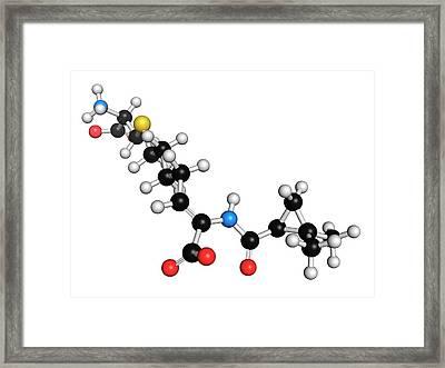 Cilastatin Molecule Framed Print by Molekuul